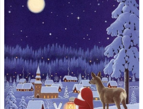 Programme ALSH Vacances Noël 2017